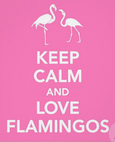 Keep Calm and love flamingos